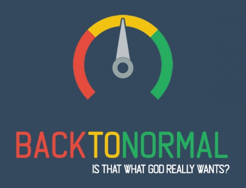 Back To Normal – Wk8
